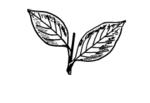 logo-AIADMK-All-India-Anna-Dravida-Munnetra-Kazhagam-10.png